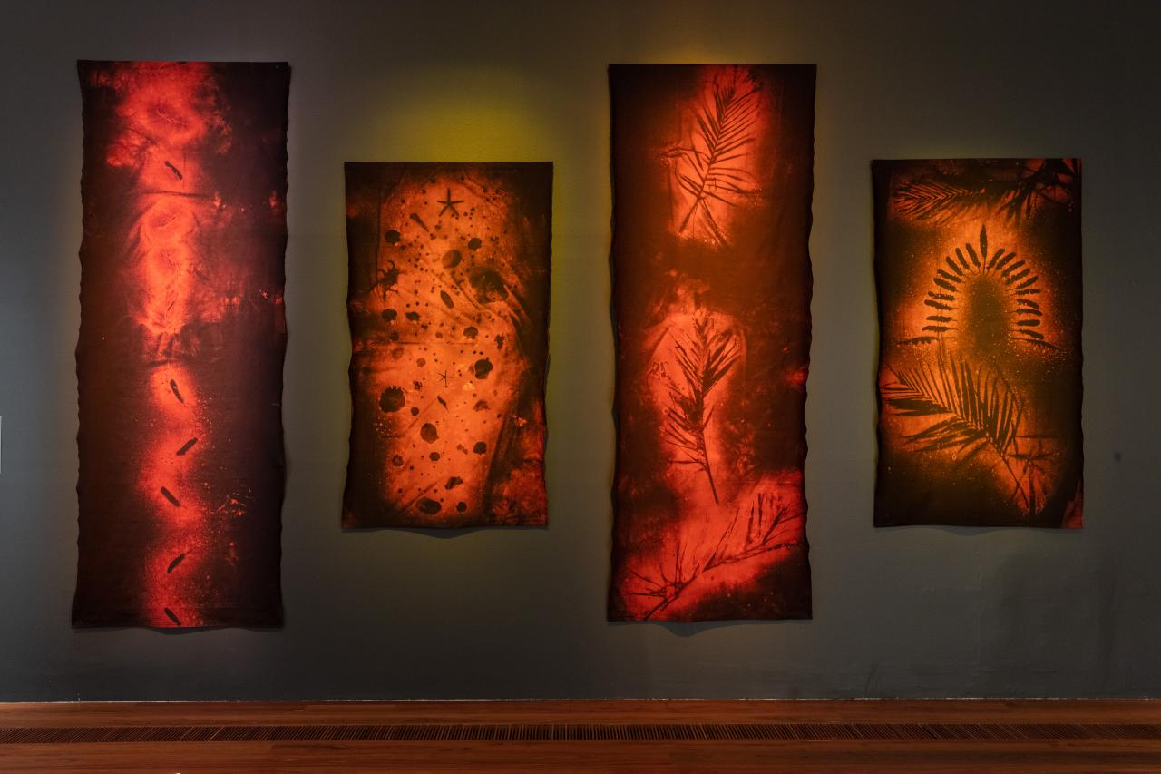 THE IMPORTANCE OF INDIGENOUS KNOWLEDGE (NGV) [Melbourne]